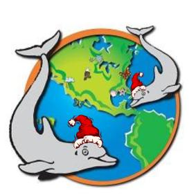 dolphinsanta