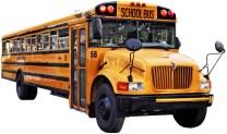 bus2-1